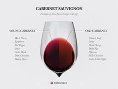 Most Common Wine Descriptions (Infographic) (Wine Folly) Cabernet Sauvignon, Sauvignon Blanc, Chenin Blanc, Pinot Noir, Wine Descriptions, Wine Facts, Wine Tasting Notes, Tasting Room, Wine Lovers