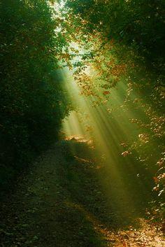 #Sunlight