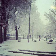 Snowy moring in Milan