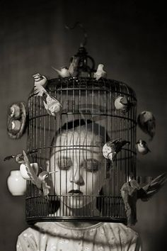 dammit, I got the bird cage stuck on my head AGAIN!!