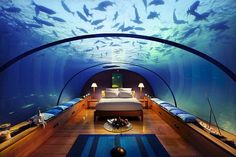 aquarium. bedroom. for real. ?. I so could not sleep in this, be worried that the dome would crack..LOL