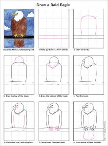 How To Draw How to Draw a Bald Eagle – Art Projects for Kids - The eagle drawing is easy enough for young elementary students. I used it with kinders who were studying American symbols. School Art Projects, Projects For Kids, Drawing Lessons, Art Lessons, Eagle Drawing Easy, Drawing For Kids, Art For Kids, Eagle Craft, First Grade Art