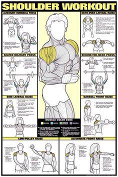Shoulders workouts