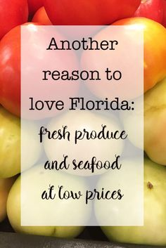 Need inspiration for summer recipes? Check out the delicious things you can make with Fresh From Florida seafood and produce. Another reason to love Florida in summer: fresh produce and seafood at low prices http://eatdrinkandsavemoney.com/2016/05/25/another-reason-love-florida-summer-fresh-produce-seafood-low-prices/  #FreshFromFlorida #IC #ad