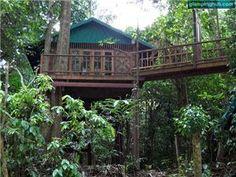 Tropical Jungle Tree House Southern Thailand   High-end eco-friendly tree lodge Surat Thani   Exotic glamorous tree lodge Thailand