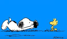 14.05. Lieblinge... Snoopy Images, Snoopy Pictures, Snoopy Cartoon, Cartoon Pics, Snoopy Wallpaper, Animal Wallpaper, Snoopy Und Woodstock, Mickey Mouse, Snoopy Quotes