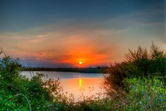 A beautiful naturally framed #sunset in the #Florida #everglades. www.photographybytj.com