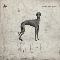 Artist: Igorrr, Ruby My Dear Album: Maigre Year: 2014 Country: France Style: Breakcore, IDM, Experimental Crust Punk, Stoner Rock, Trip Hop, Concert Tickets, Thrash Metal, Music Covers, World Music, Death Metal, Whippet