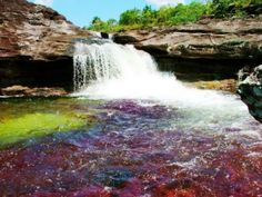 Ca�o Cristales � 19 Photos of the Beautiful River �Flowing in the Heaven�