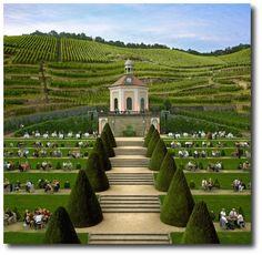 Sächsisches Staatsweingut Schloss Wackerbarth #wine #architecture #germany #sachsen