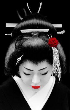 New Year in Kyoto Japan (by momoyama) ? The geiko Kikutsuru. Together with other geiko (geisha) and maiko (apprentice geisha) of the Miyagawa-cho district Kikutsuru was visiting tea houses and teachers to wish them a happy new year. Japanese Geisha, Japanese Kimono, Art Geisha, Japan Art, Japan Japan, Kyoto Japan, Okinawa Japan, Memoirs Of A Geisha, Art Asiatique
