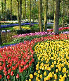 Beautiful Eukenhof Gardens – Netherlands
