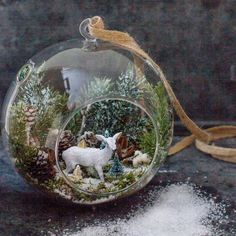 Hanging Glass Globe Terrarium Air Plant Candle Holder Christmas Ornament As seen in Better Homes & G Diy Christmas Ornaments, Homemade Christmas, Christmas Projects, Holiday Crafts, Christmas Decorations, All Things Christmas, Winter Christmas, Vintage Christmas, Christmas Holidays