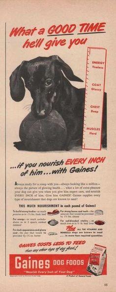 Gaines Dog Food Good Time (1949) onvintageadbrowser.com