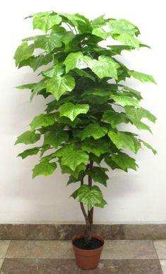 120 cm-es szőlőleveles dekorációs fa Herbs, Herb, Medicinal Plants