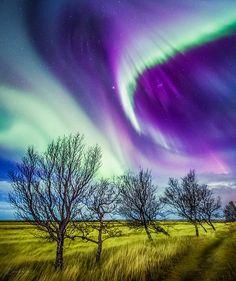 Aurora Borealis - Dverghamrar, Iceland
