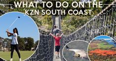 South Coast world-class attractions - Leisure Letting South Coast