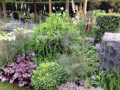 Chelsea Flower Show 2014 a visit by Daisy Alley