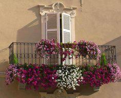 Kwiaty na balkonie  Projektowanie i pielęgnacja ogrodów: www.transgaj.pl  flower balcony door