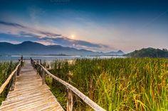 Bamboo bridge near reservoir by hadkhanong on Creative Market