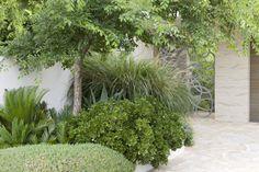 Peter Fudge creates gardens that connect in deep and meaningful ways. Peter has been designing beautiful gardens since Every garden design has… Modern Garden Design, Contemporary Garden, Landscape Design, Contemporary Style, Outdoor Plants, Outdoor Gardens, Bush Garden, Garden Gates, Australian Native Garden