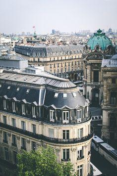 {Paris rooftops}