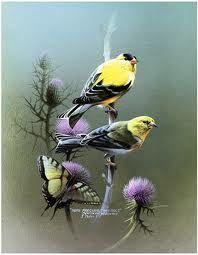 bird art - Google Search