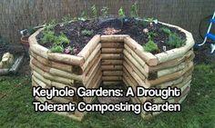 Keyhole Gardens: A Drought Tolerant Composting Garden