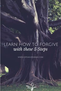 Learning how to forgive is the best gift you can give to yourself. Follow these 5 steps to forgiveness.