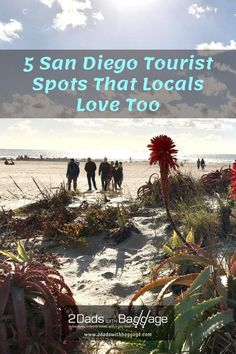 5 San Diego Tourist Spots That Locals Love Too - 2 Dads with Baggage Family Vacation Destinations, Best Vacations, Vacation Trips, Travel With Kids, Family Travel, Hotel Del Coronado, Tourist Spots, Best Places To Travel, Cruises