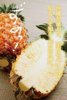沖縄が産んだ至高のパイン。