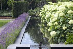 Pinned to Garden Design - Water Features by Darin Bradbury.