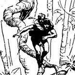 Tarzan dos macacos - desenho de Harold Foster - imagem 4