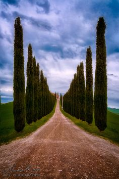 On the Way Home by Davide Russo on 500px