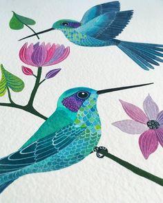 "2,401 Likes, 53 Comments - Geninne D Zlatkis (@geninne) on Instagram: ""Mexican violetear hummingbird Colibrí orejiazul"""