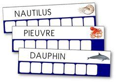 À travers cette activité, les élèves vont apprendre à lire et à écrire de nouveaux mots tout en ayant le plaisir de partir à la découverte des fonds marins. Fiches pour apprendre à lire quelques mots simples dès la maternelle