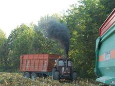 Big Tractors, Farming, Trucks, Modern, Trendy Tree, Truck, Cars
