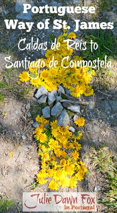 Descriptions and tips for the last two stages on the Portuguese Way of St. James from Caldas de Reis to Santiago de Compostela via Padron. Read all about it by clicking on the photo.