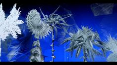 Miguel CHEVALIER Paradis artificiels 2014 (version courte, short version). Un film de Claude Mossessian © Claude Mossessian  Miguel CHEVALIE...