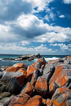 Bay of fires, Tasmania Ways To Travel, Travel Pics, Sky And Clouds, White Sand Beach, Tasmania, Plan Your Trip, Landscape Photos, Nature Photos, Travel Destinations
