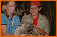 Volunteer Work With Animals – Bolivia