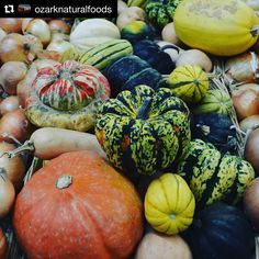 Beautiful #p6 #wintersquash at @ozarknaturalfoods