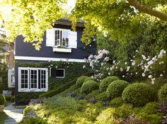 small-mill_valley_garden_hillside_garden_gardenista_OT068908