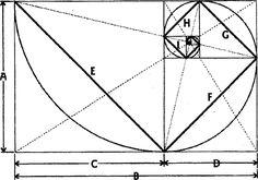 Золотое сечение. Божественная пропорция. Сакральная геометрия ...