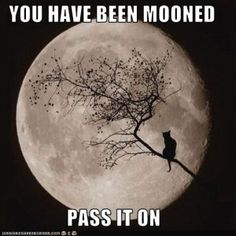 What's your favorite Full Moon celebration?