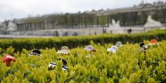 Alexandre de Paris Vendome clip in Paris #Paris #Vendome