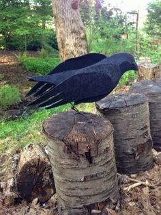 AND SEW IT GOES: The Crow