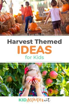 A collection of harvest themed ideas for kids. Great for a harvest theme day at school. Fall Activities For Toddlers, Halloween Activities For Kids, Autumn Activities, Halloween Kids, Kid Activities, Easy Fall Crafts, Fall Crafts For Kids, Fun Classroom Games, Classroom Ideas