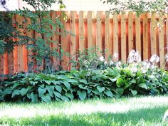 6' High Shadowbox style, cedar wood fence