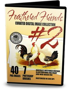 Once I realized how popular our first Feathered Friends collection was, I immediately set out to locate more images of chickens, roosters, ducks to grace your creative crafting projects. This second volume features plenty of poultry images, and a collection of (7) Photoshop® brushes. They are perfect for all of your cardmaking, scrapbook layouts, tags, printables and altered art projects.